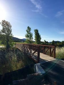 Oak Knoll Vine Trail Bridge